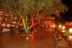 Lire la suite: Restaurant Dardachat Beyrouth Hammamet