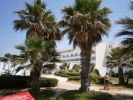 Lire la suite : Hôtel Happy Days Sultan Beach Hammamet